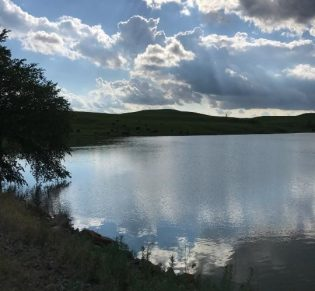 Skt News Article July 2020 Featured Image Rosalia Ranch Pond