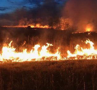 Skt News Article July 2020 Featured Image Rosalia Ranch Burning Grass